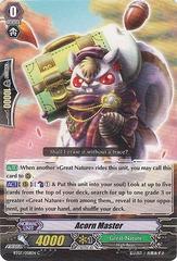 Acorn Master - BT07/058EN - C