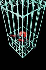 Superior Spider Man #11 Now