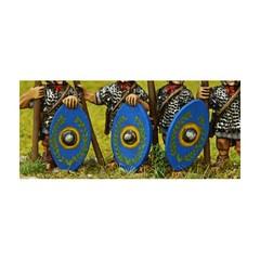 Roman Oval shield (Early Imperial Roman) (151005-0122)
