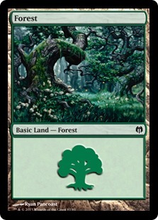 Forest (81)